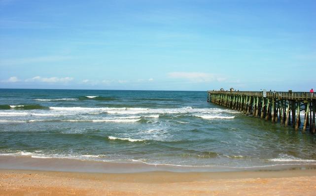 Flagler Beach FL 2015 (25)